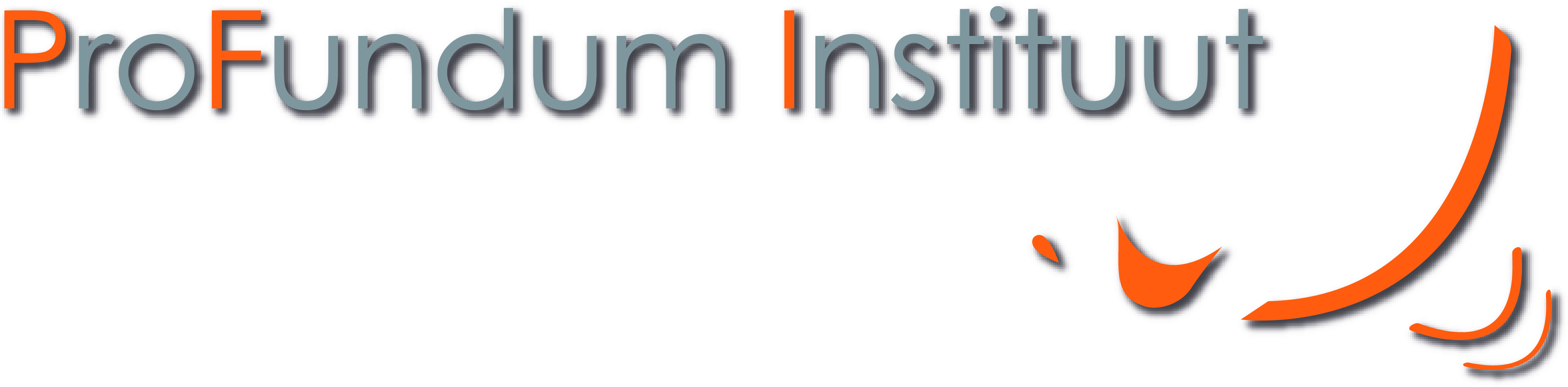 Logo ProFundum Institute